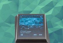 Digital Audio Player von Astell&Kern Modell AK 300. Astell & Kern rundet sein Angebot an mobilen Digital Audio Playern mit einem vergleichsweise günstigen Modell nach unten ab. Der AK300 ist eine echte Kampfansage an die Konkurrenz.